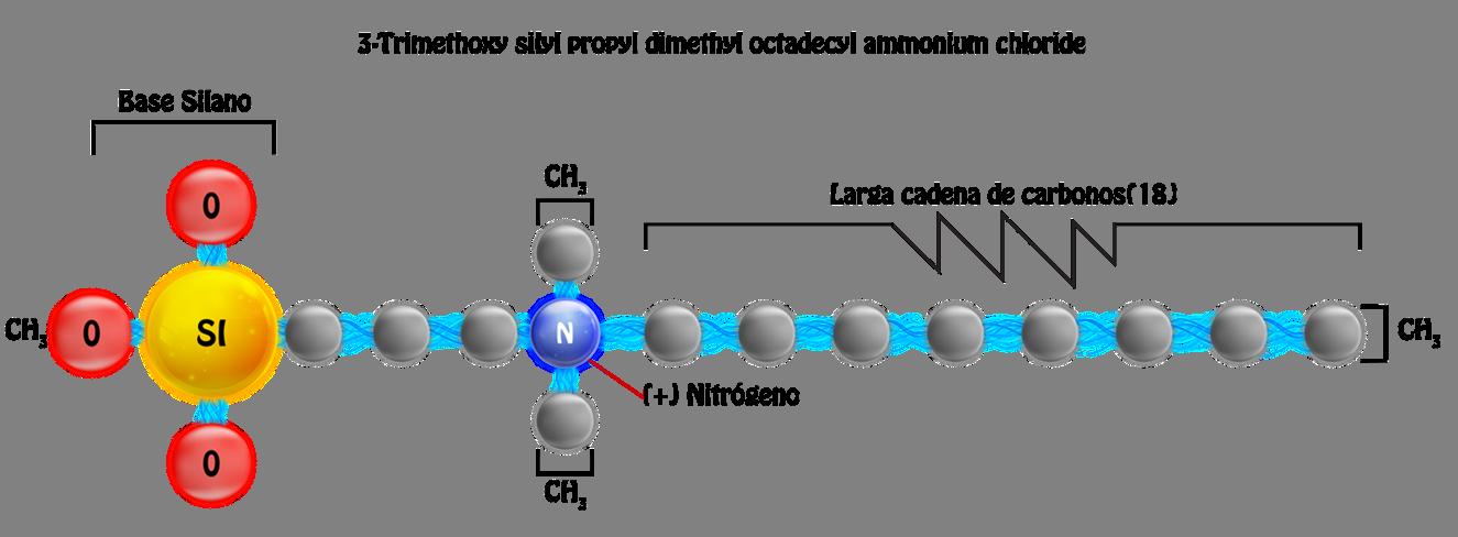 estructura-molecula